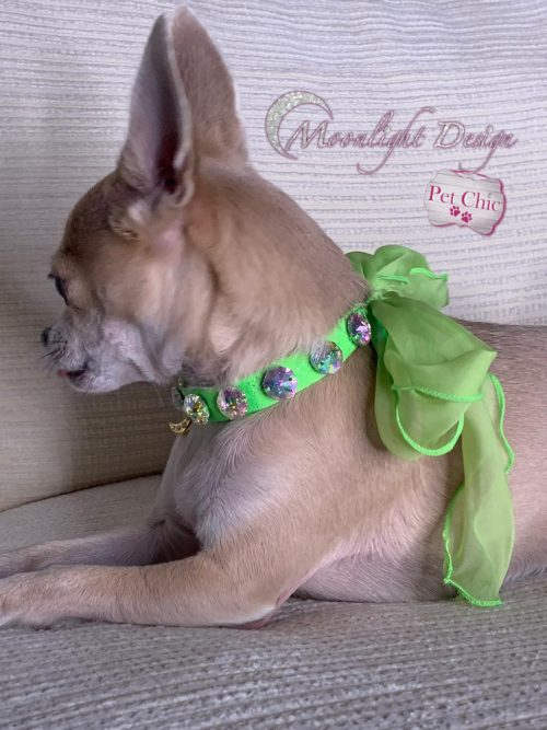 Love Wrap Holographic   Fashion Accessory For Pets   Moonlight Design