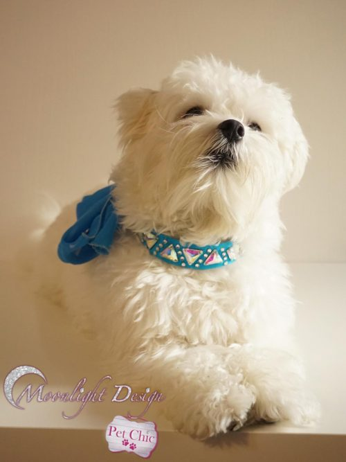 Pet collar with bow, triangle crystals